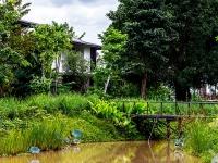 Pond/Garden Villa